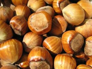 Hazelnuts_02