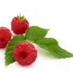 The Benefits of Raspberry Leaf Tincture & My Raspberry Leaf Tincture Recipe