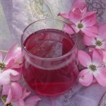 {Recipe} Refreshing Cranberry Drink – Hydrate and Prevent UTI's :-)
